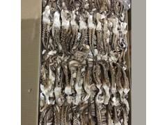 鱿鱼二本足10公斤1Ⅹ2板220元1件